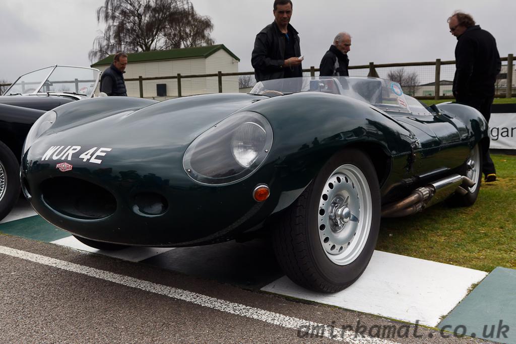 Jaguar D-type shortnose