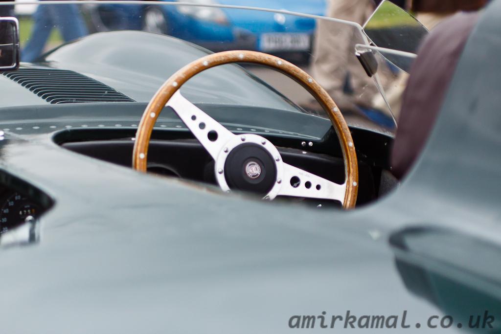 Jaguar D-type shortnose, detail