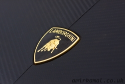 Lamborghini badge detail