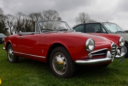 Alfa Romeo Spide