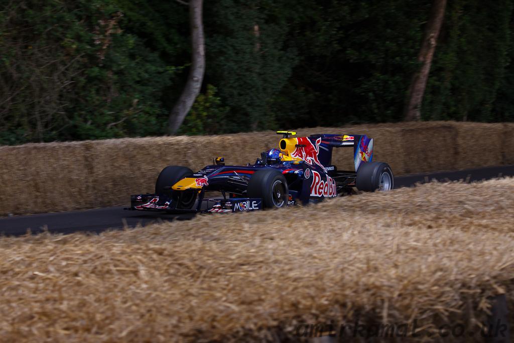 Red Bull RB5, 2009