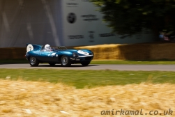 Jaguar D-Type  'Long Nose'
